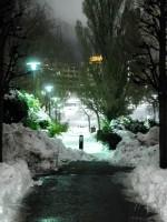 Stockholm Snow Cannon Nov 2016
