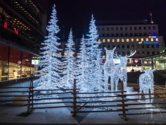 stockholm-christmas-winter-solstice2016-88-60
